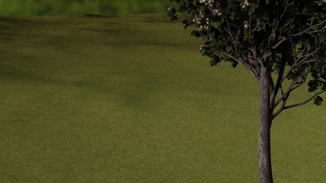 grass_simple